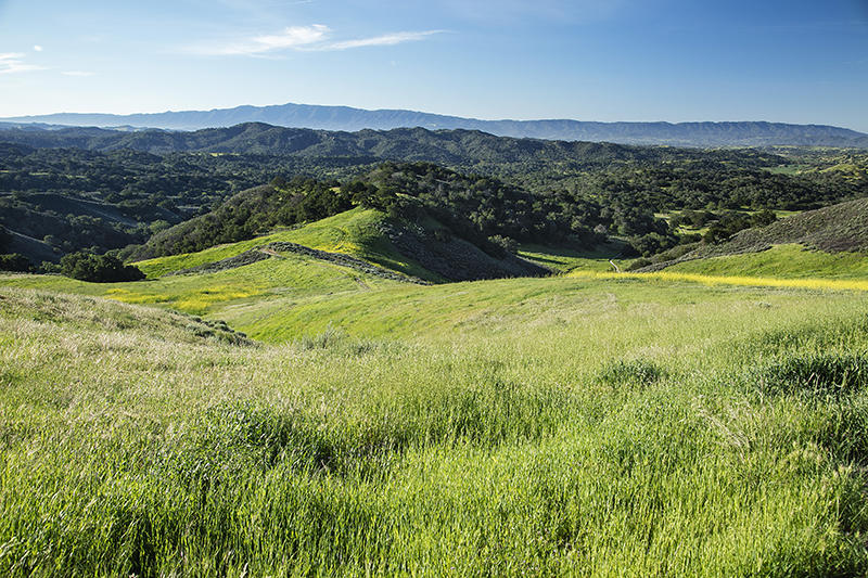 5225 Figueroa Mountain Rd Los Olivos, CA 93441