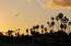 101 Por La Mar Cir, SANTA BARBARA, CA 93103