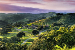 A 253 acre majesty of California rolling Oak woodland suitable for vineyards and families with animals.