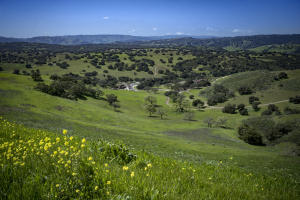 2627 Via De Los Ranchos, SANTA YNEZ, CA 93441