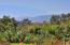 4015 Ramitas Rd, SANTA BARBARA, CA 93110