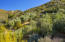 904 Toro Canyon Rd, SANTA BARBARA, CA 93108