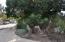 1116 Calle Del Sol, SANTA BARBARA, CA 93101