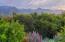 305 Sierra Vista, SANTA BARBARA, CA 93108