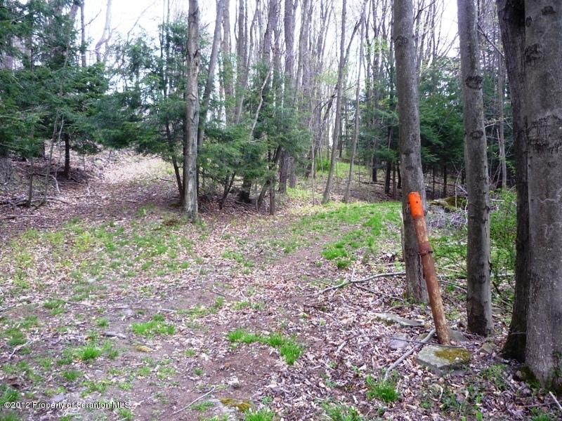 GREEN RUN RD, Spring Brook Twp, Pennsylvania 18444, ,Land,For Sale,GREEN RUN,12-2170