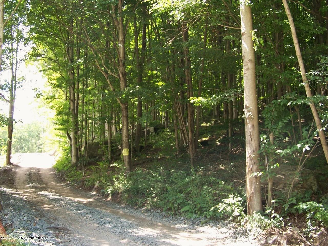 State Route 3011, Meshoppen, Pennsylvania 18630, ,Land,For Sale,Route 3011,12-3537