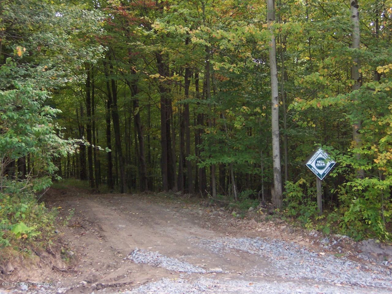 Twp Rd 655 THORN HILL RD, Ararat, Pennsylvania 18465, ,Land,For Sale,THORN HILL,12-4344
