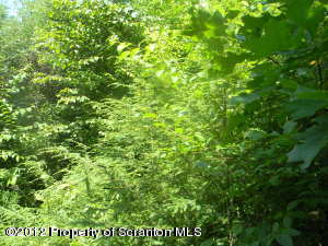 #4 and #5 Saddle Lake Lots, Tunkhannock, Pennsylvania 18657, ,Land,For Sale,Saddle Lake Lots,12-5058