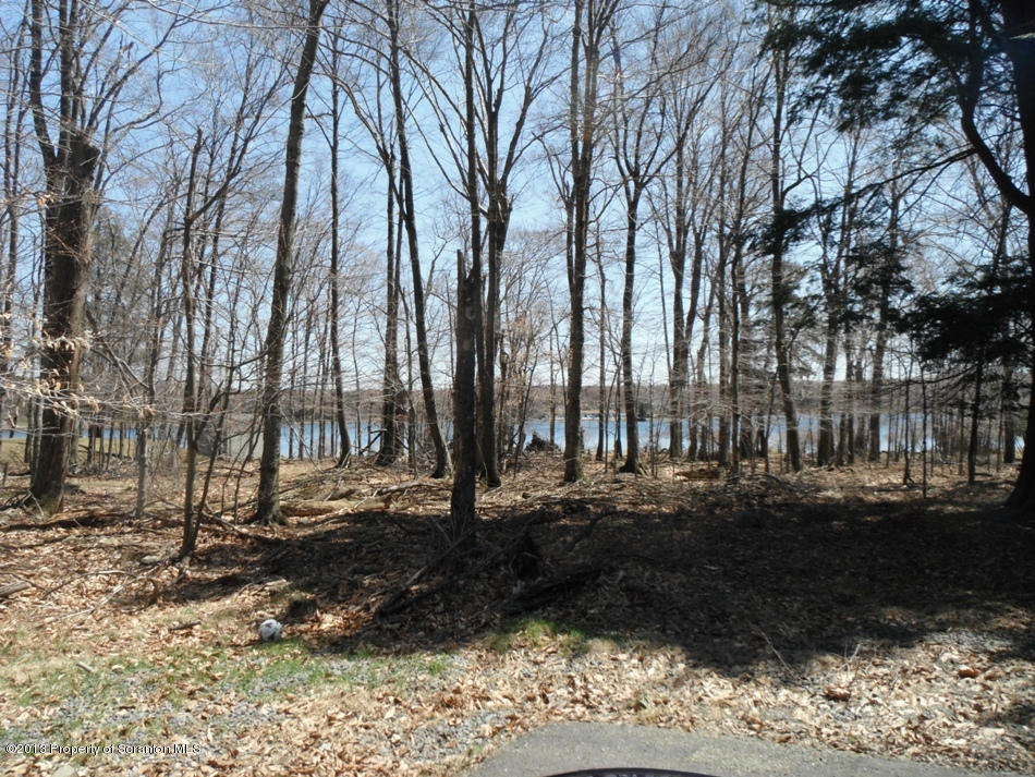 35 & 36 Forest Ln, Gouldsboro, Pennsylvania 18424, ,Land,For Sale,Forest,13-819