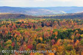 LOWER MAPLE DR, Clarks Summit, Pennsylvania 18411, ,Land,For Sale,LOWER MAPLE,13-5124