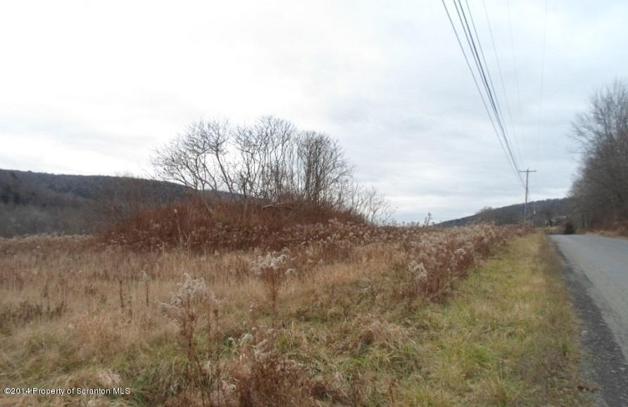 Old Route 11, Great Bend, Pennsylvania 18821, ,Land,For Sale,Old Route 11,14-1941