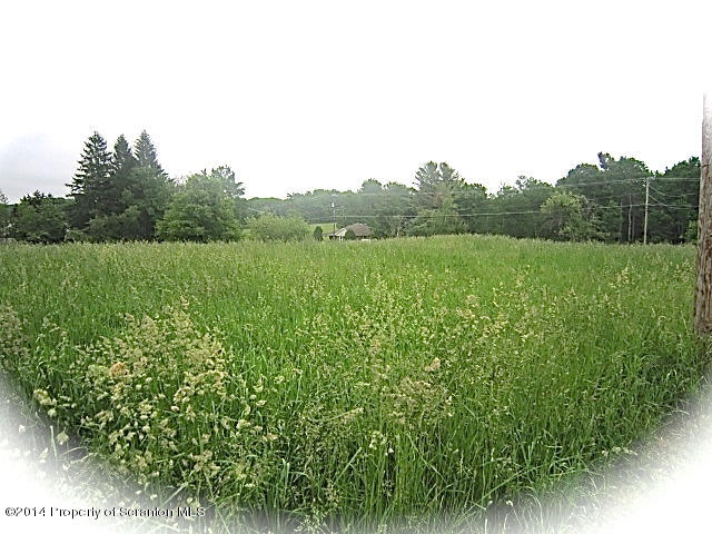 LOT 4 Maple Lake Rd, Spring Brook Twp, Pennsylvania 18444, ,Land,For Sale,Maple Lake,14-2865