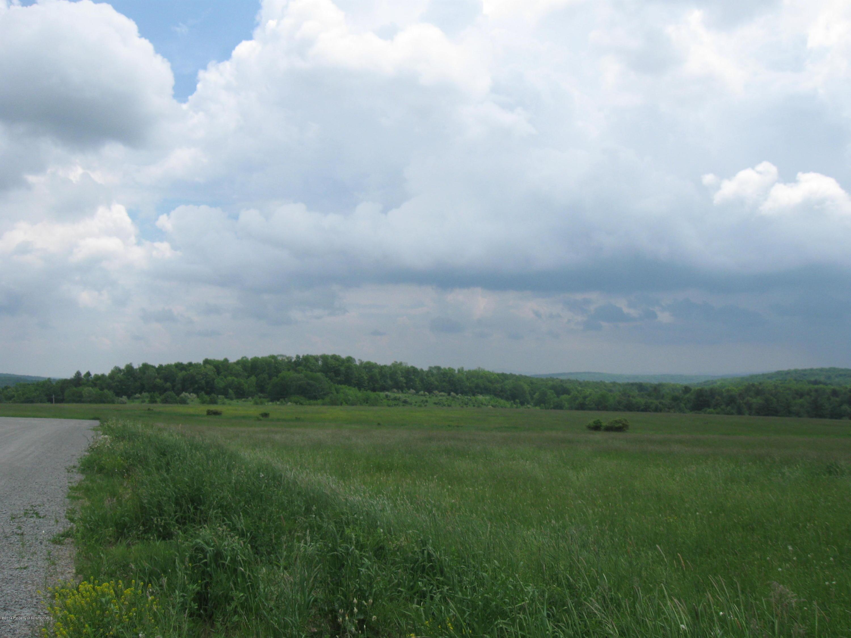 SR 29 & Ellsworth Drive, Montrose, Pennsylvania 18801, ,Land,For Sale,SR 29 & Ellsworth Drive,14-2455