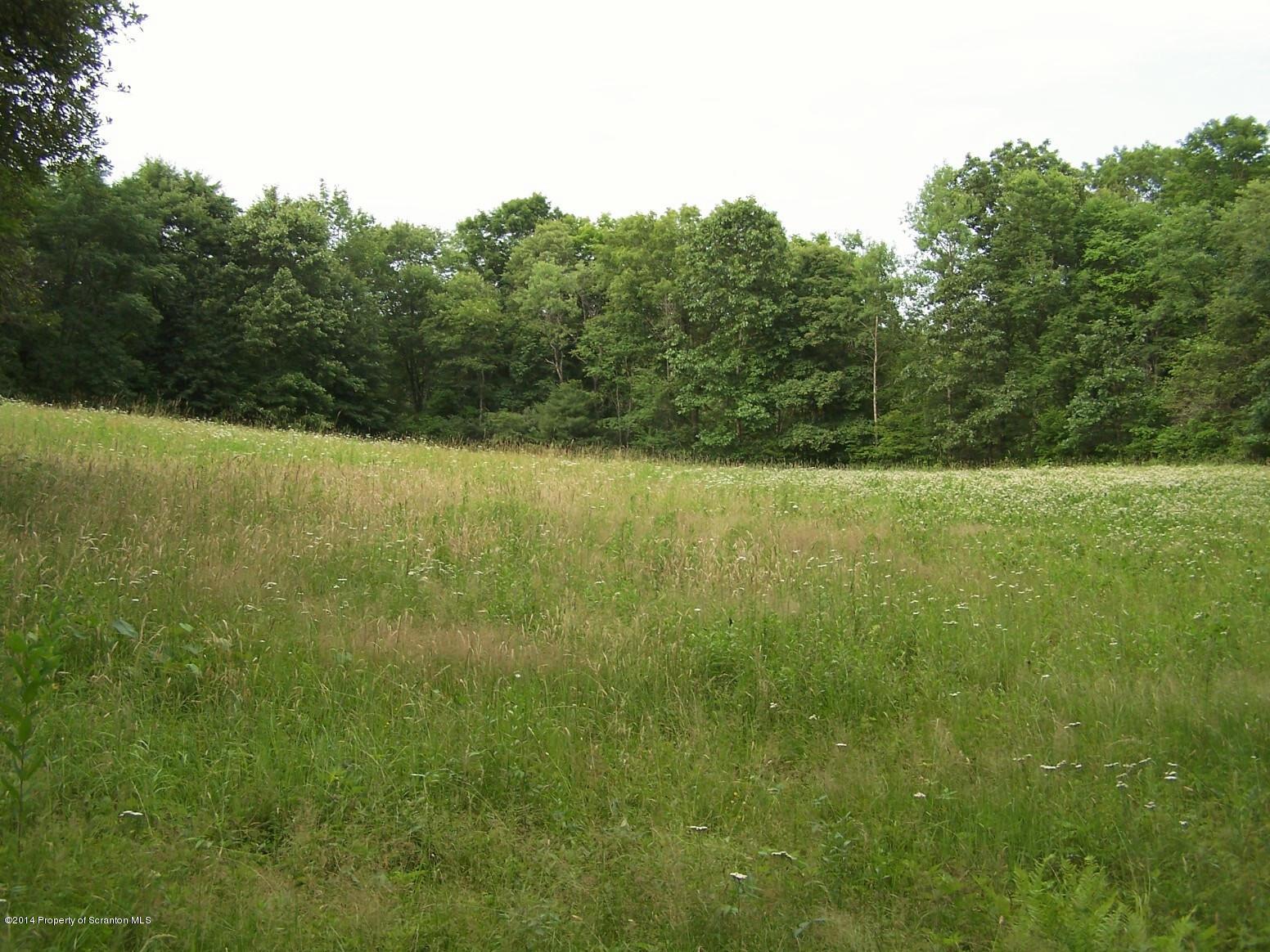 53 SWEET VALLEY RD, Hunlock Creek, Pennsylvania 18621, ,Land,For Sale,SWEET VALLEY,14-3968