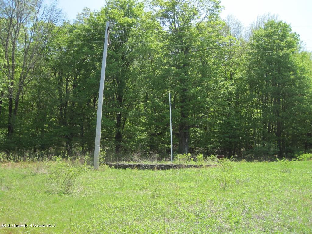 00 Lamb Road, Thompson, Pennsylvania 18465, ,Land,For Sale,Lamb Road,15-4051