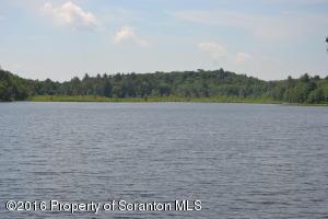 202 Bigelow Lake Rd, Pleasant Mount, PA 18453