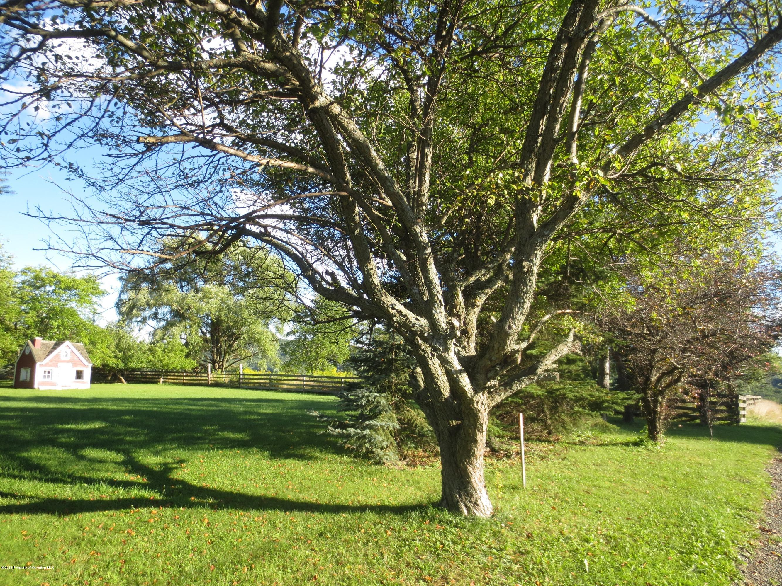108 Silver Maple, Lot 3, Scott Twp, Pennsylvania 18411, ,Land,For Sale,Silver Maple,16-4716