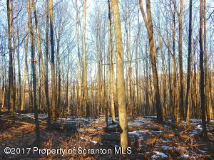 LOT 2 407 Bell Mountain Road, Greenfield Twp, PA 18407