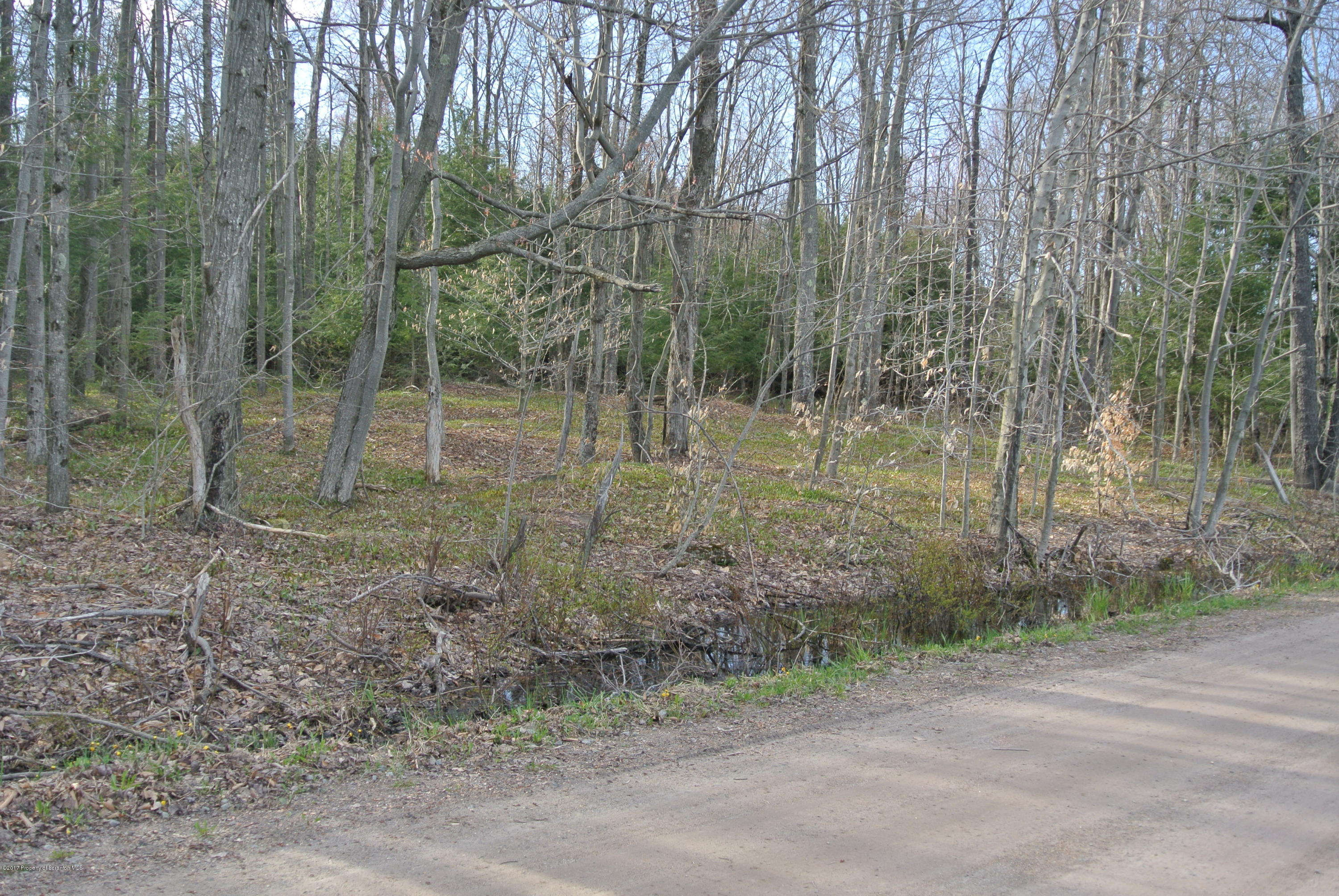 175 North Rd, Pleasant Mount, Pennsylvania 18453, ,Land,For Sale,North,17-1681