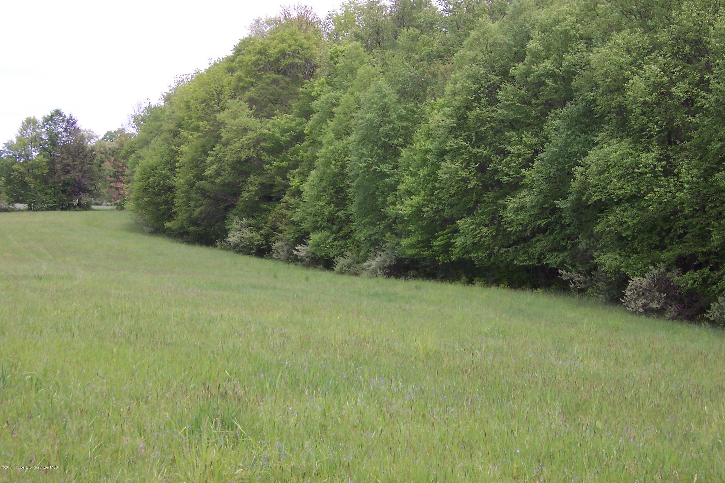 0 Corby Road, Friendsville, Pennsylvania 18818, ,Land,For Sale,Corby Road,17-3700