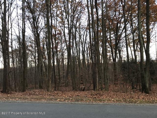 340 Golf Club Rd, Roaring Brook Twp, Pennsylvania 18444, ,Land,For Sale,Golf Club,17-5303