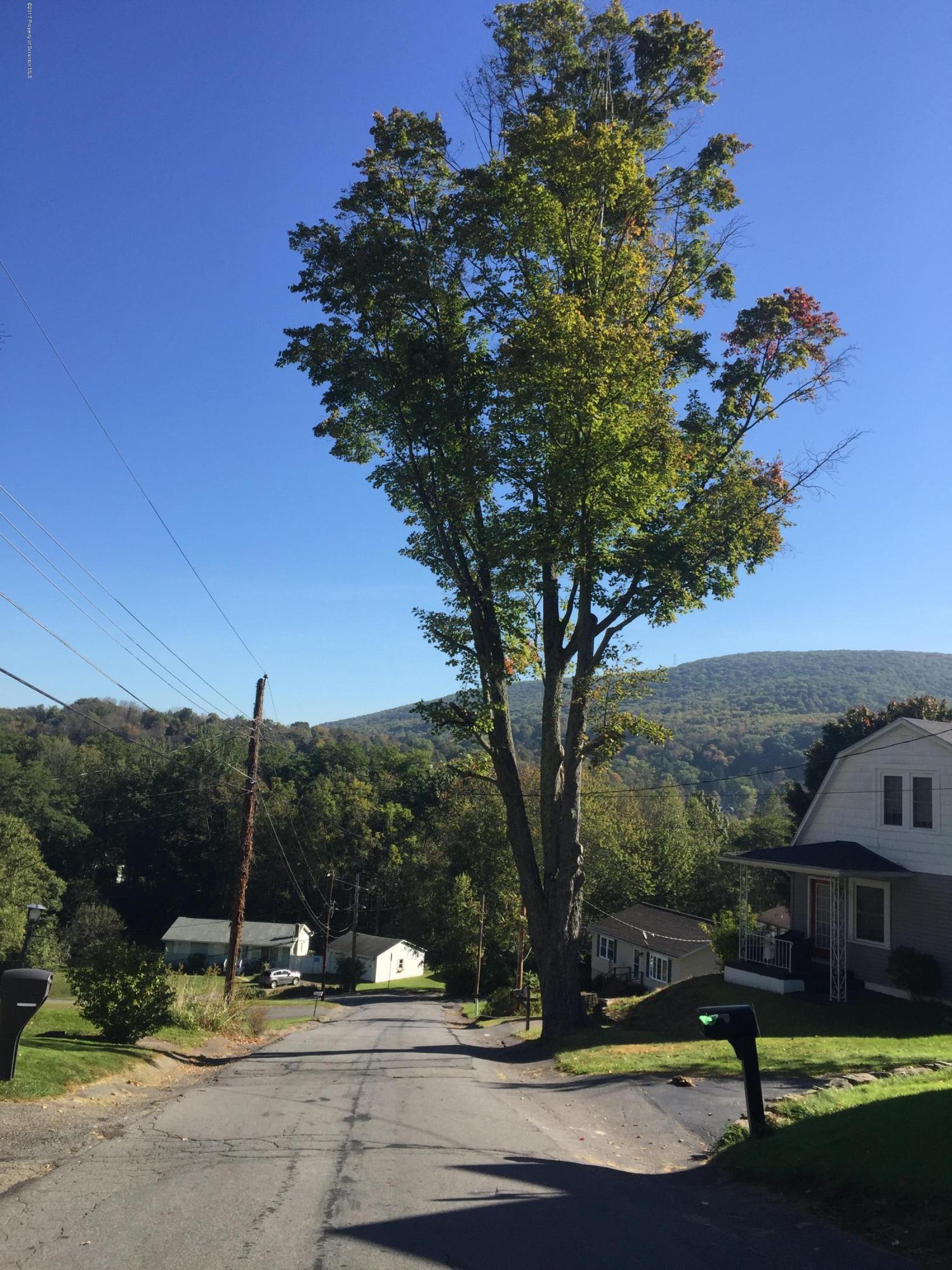 Leach Ave, Chinchilla, Pennsylvania 18410, ,Land,For Sale,Leach,17-5290