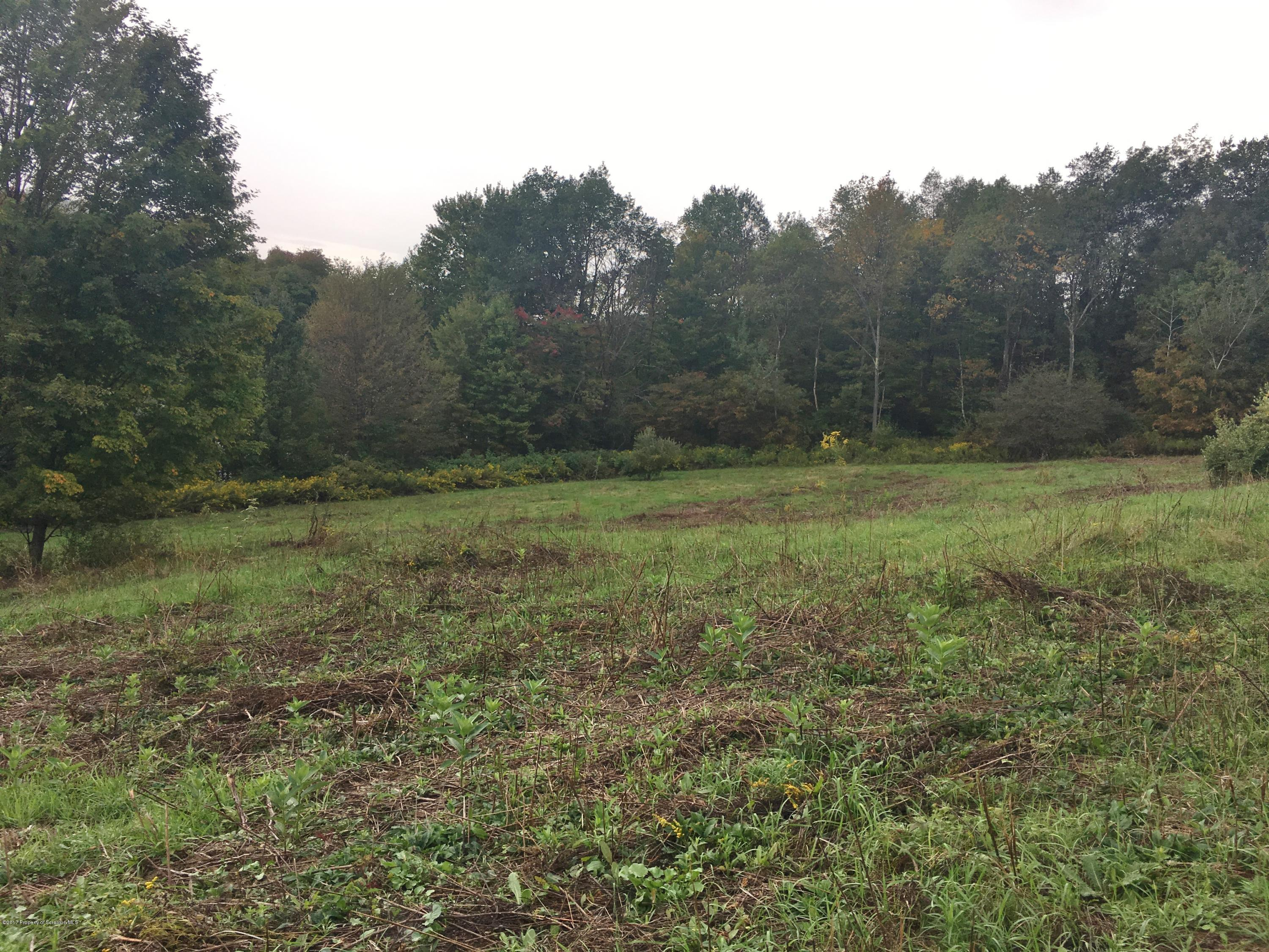 5678 SR 374, Clifford Twp, Pennsylvania 18441, ,Land,For Sale,SR 374,18-2529