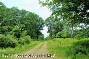 W Lr 35102 On Private, Spring Brook Twp, PA 18444