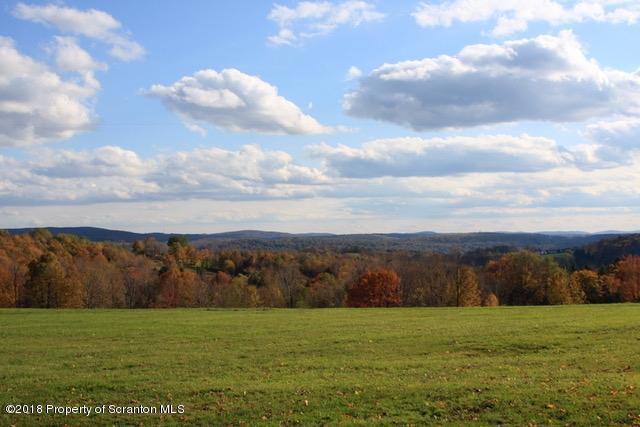 41 Plue Rd, Union Dale, Pennsylvania 18470, ,Land,For Sale,Plue,18-4052