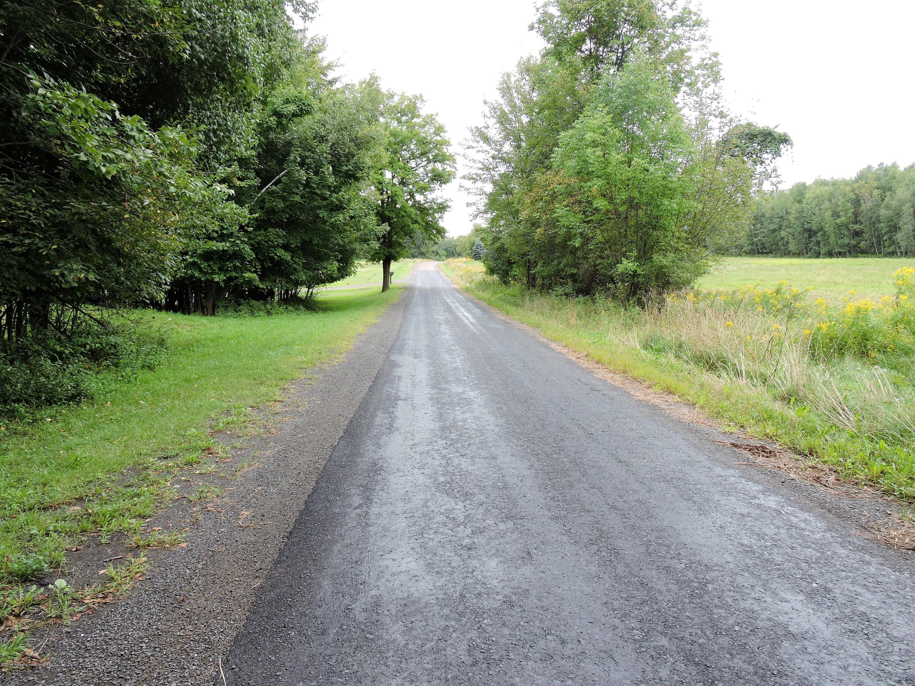 977 Louies Rd, New Albany, Pennsylvania 18833, ,Land,For Sale,Louies Rd,18-4301