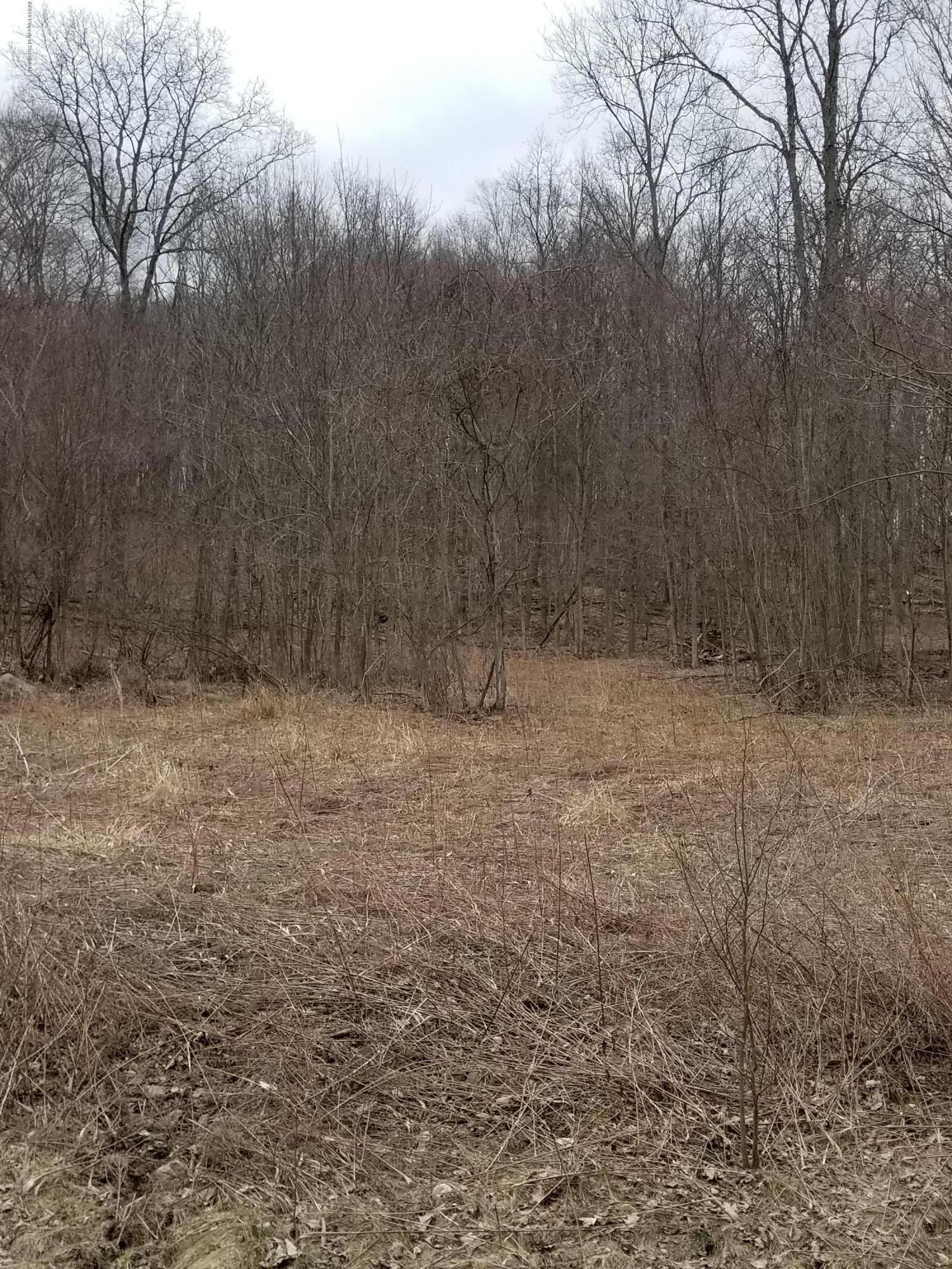 32 T 562 Spedding Farm L 32, Carbondale, Pennsylvania 18407, ,Land,For Sale,T 562 Spedding Farm L 32,19-1567