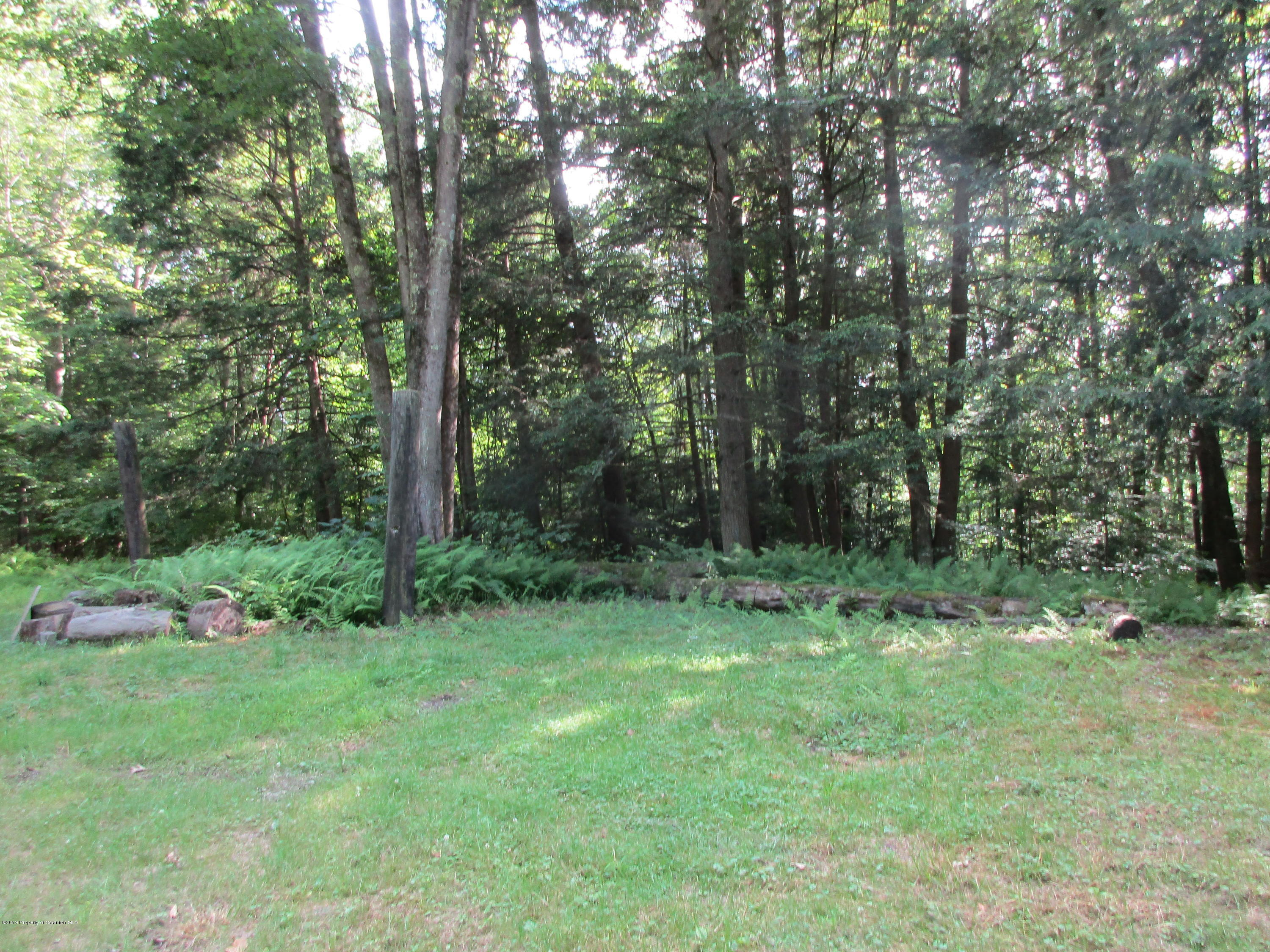 304 Fieldsbrook Rd, Nicholson, Pennsylvania 18446, ,Land,For Sale,Fieldsbrook,19-3205