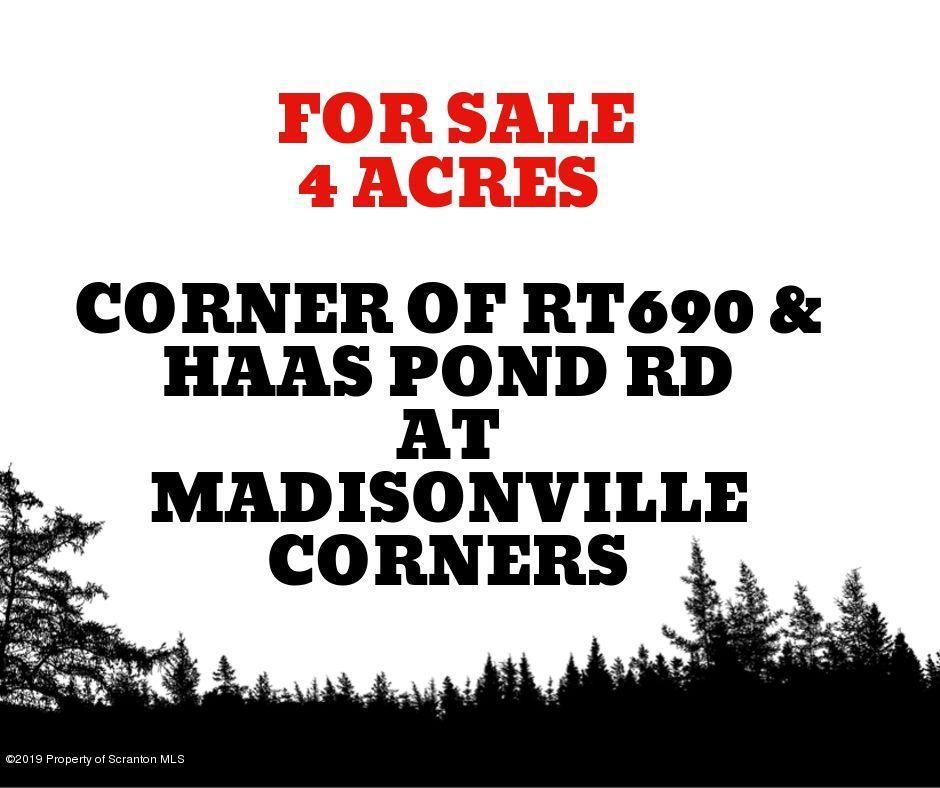 Cor Sr 690 & Haas Pond Rd, Madison Twp, Pennsylvania 18444, ,Land,For Sale,Cor Sr 690 & Haas Pond,19-4551