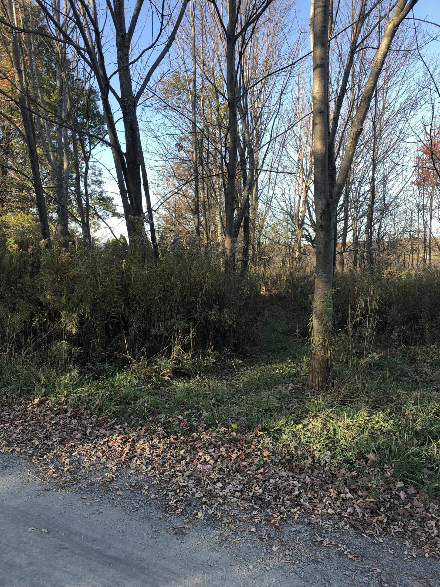 High Point St, Greenfield Twp, Pennsylvania 18407, ,Land,For Sale,High Point,19-5091