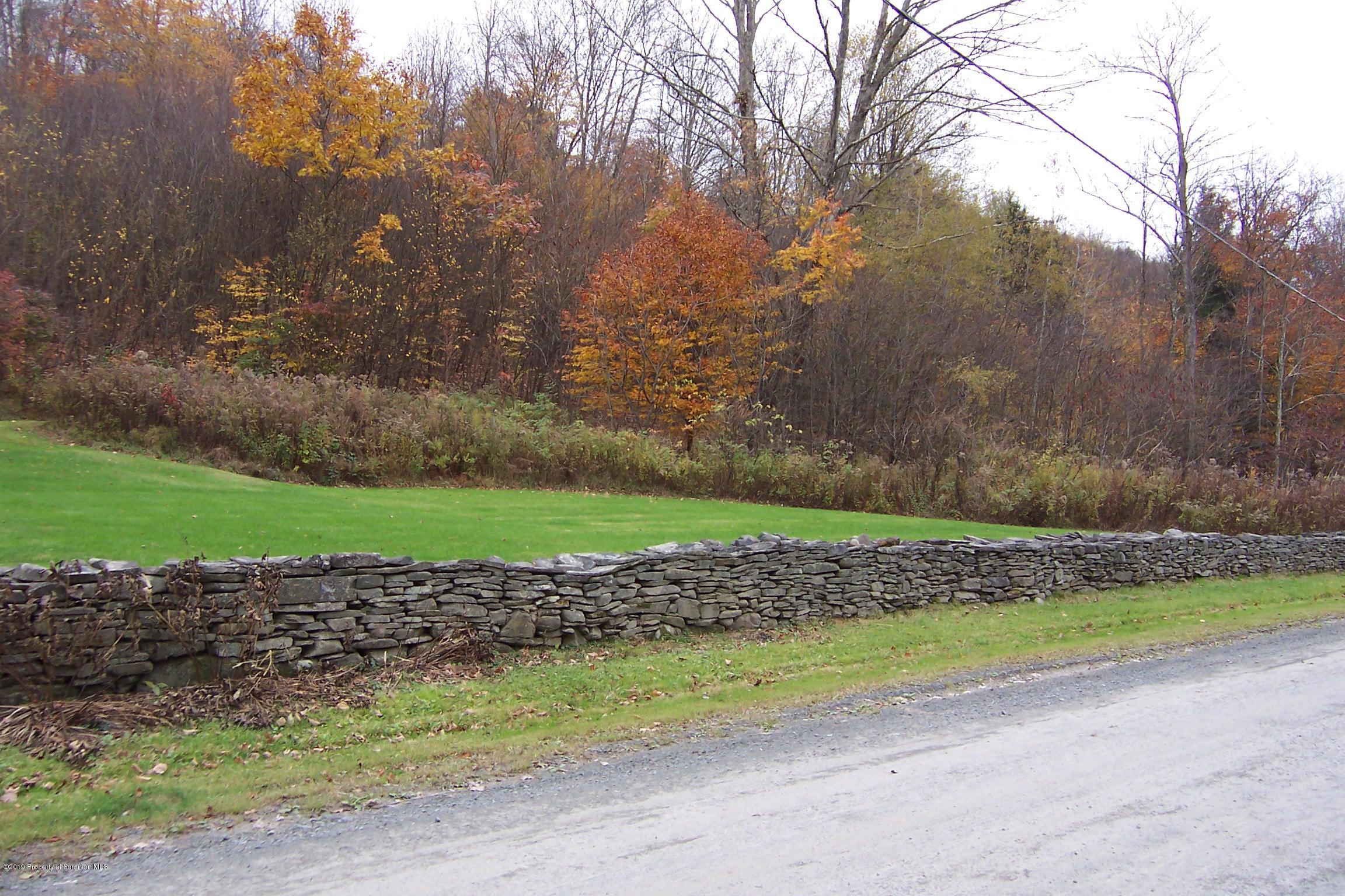 0 Lower Podunk Road, New Milford, Pennsylvania 18834, ,Land,For Sale,Lower Podunk Road,19-5120