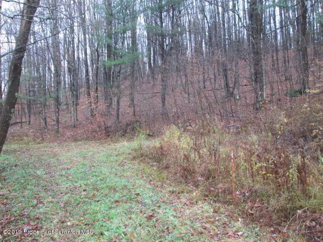 853 Silver Creek road, Montrose, Pennsylvania 18801, ,Land,For Sale,Silver Creek road,19-5362