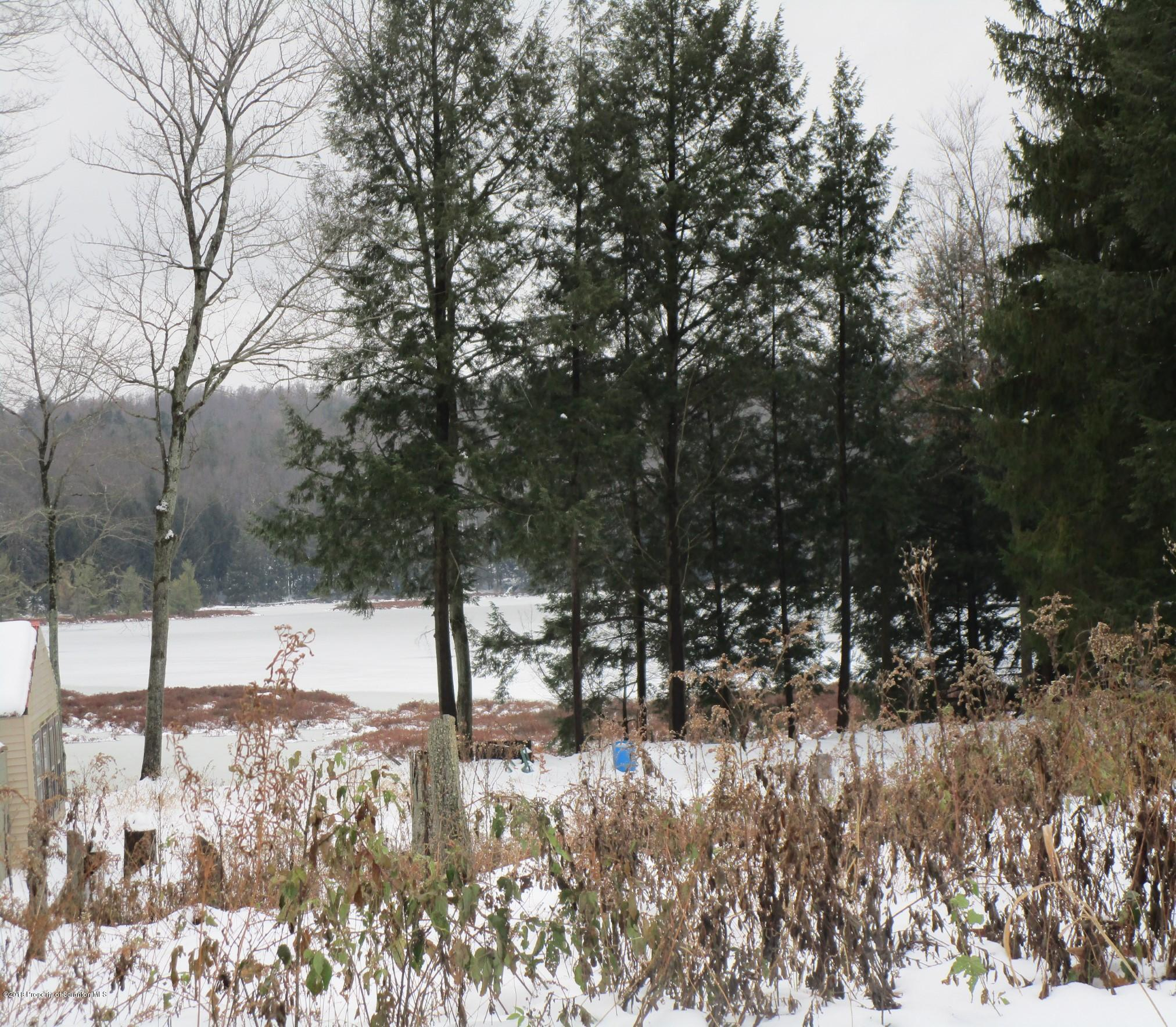 3825 Cranberry Lake Road, Brackney, Pennsylvania 18812, ,Land,For Sale,Cranberry Lake Road,19-5452