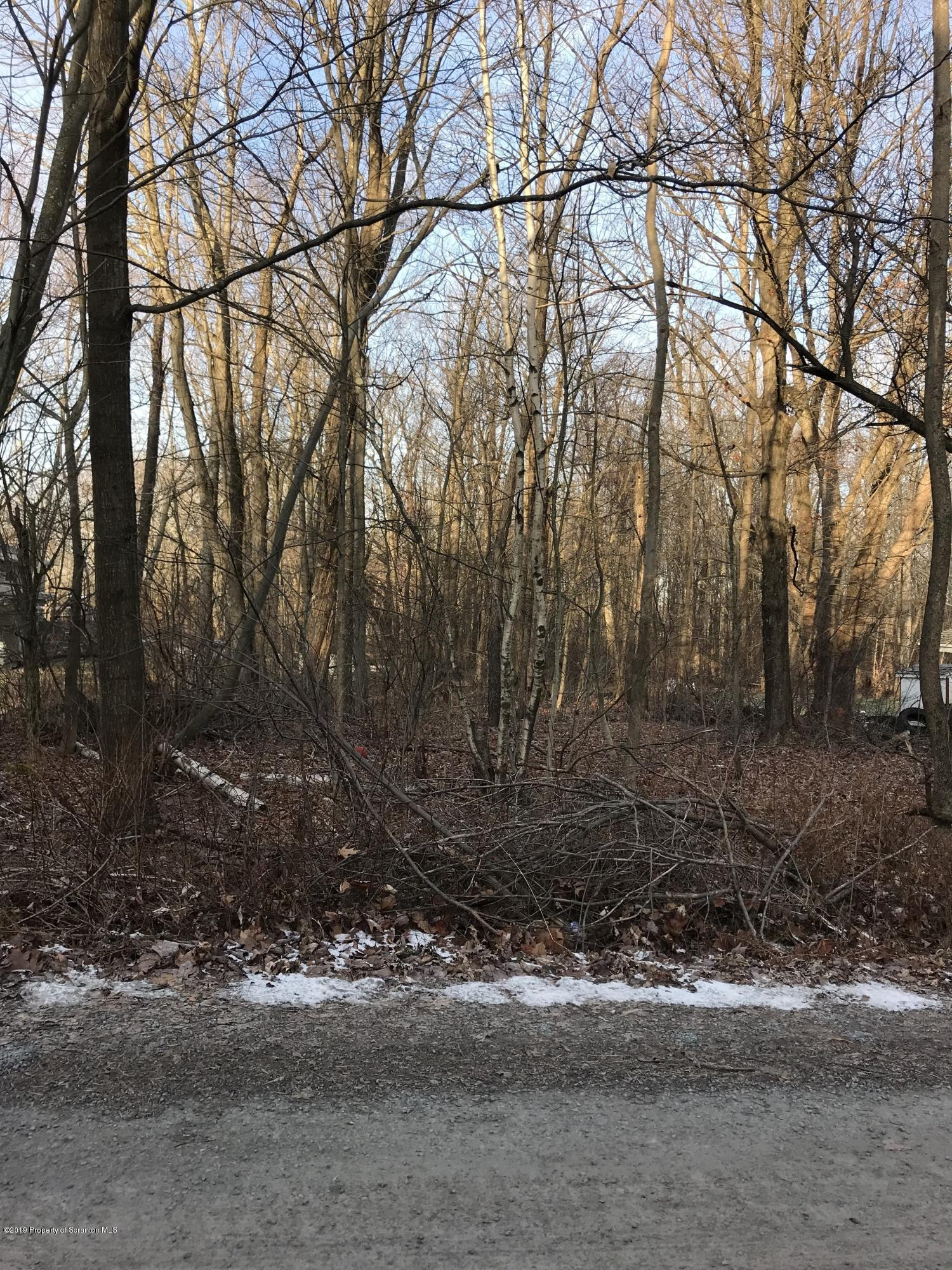 210 Ruthland Rd, Greenfield Twp, Pennsylvania 18407, ,Land,For Sale,Ruthland,19-5681