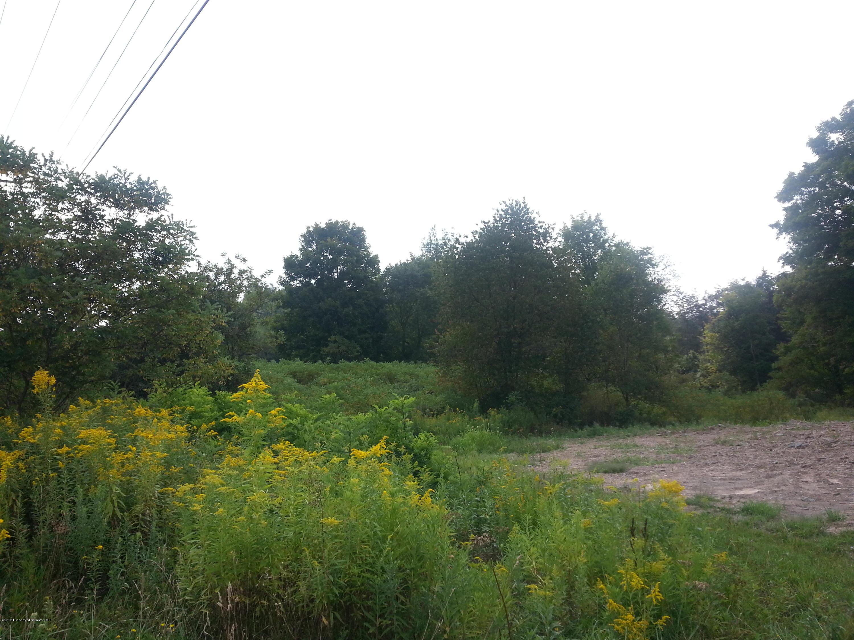 Sr 524 & T 488, Scott Twp, Pennsylvania 18414, ,Land,For Sale,Sr 524 & T 488,19-5704