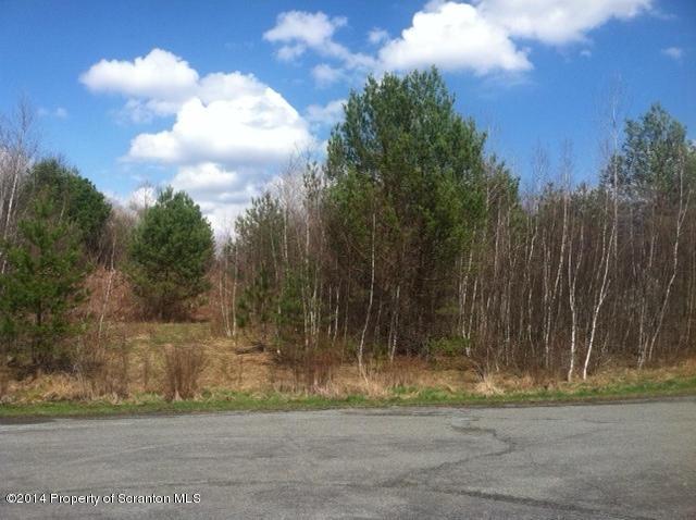 Lot #3 Elovar Drive, Browndale, Pennsylvania 18421, ,Land,For Sale,Elovar Drive,20-46