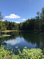 5 acre stocked pond