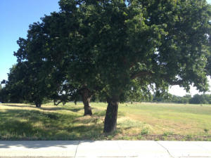 Lot #27 Grand Estates Dr., Palo Cedro, CA 96073