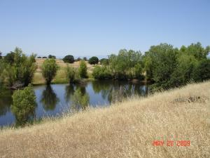 SUNSET HILLS DR, COTTONWOOD, CA 96022