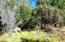 #03,5.09 ac Christy Creek Lane, Shingletown, CA 96088