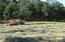 06-03-16 baling hay