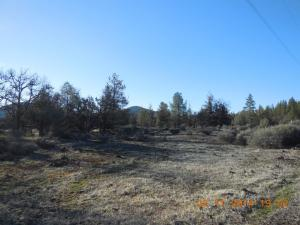 Lot 20 ALPINE WAY