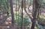 5.2 acres Smith Logging Road, Oak Run, CA 96069