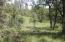 148 Acres Donkey Mine Road, Oak Run, CA 96069