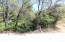 2.75 ac. Rainbow Lake Rd., Ono, CA 96047