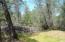5 acres Cactus Ln, Redding, CA 96003